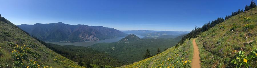 Dog Mountain at Columbia River Gorge in WA