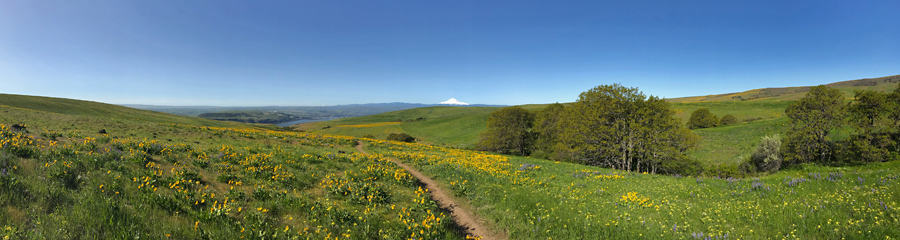 Dalles Mountain Ranch at Columbia River Gorge in WA