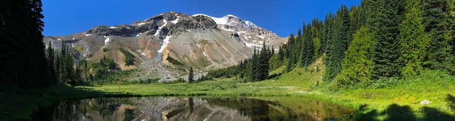 Summerland at Mt. Rainier NP in WA