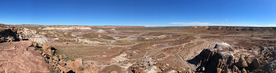 Jasper Forest at Petrified Forest NP in AZ